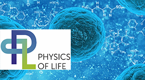 Preview for research project: Cluster of Excellence Physics of Life (PoL) – The Dynamic Organization of Living Matter